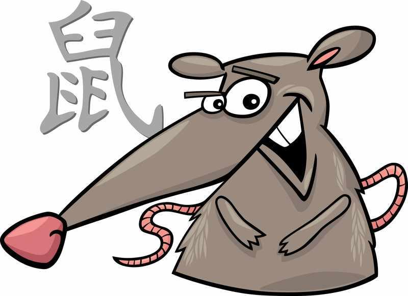 China Horoskop Ratte 2 Das Pferd   China Horoskop