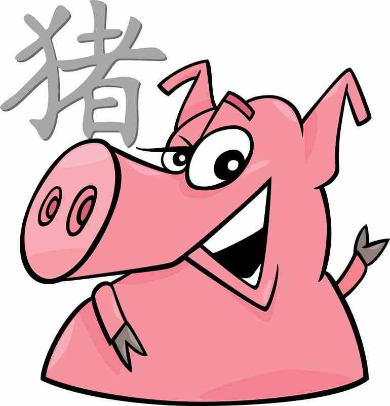 China Horoskop Schwein 2 Das Pferd   China Horoskop