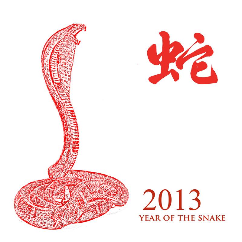 Das Jahr der Schlange 2013
